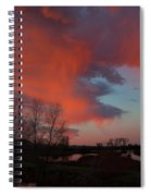 Early Dawn In The Wetlands Spiral Notebook