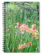 Early Fall Color Spiral Notebook