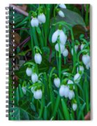 Early Spring Spiral Notebook