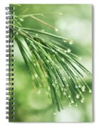 Early Spring Woodland Spiral Notebook