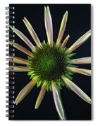 Early Stage Of Cone Flower Bloom Spiral Notebook