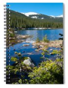 Early Summer At Finch Lake Spiral Notebook
