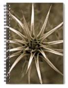 Early Thistle Spiral Notebook