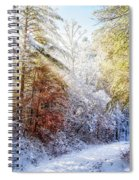 Early Winter's Walk Spiral Notebook
