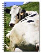 Earmarked Spiral Notebook