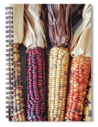 Ears Of Indian Corn Spiral Notebook