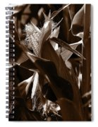 Ears To You Corn - Sepia Spiral Notebook