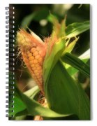 Ear's To You Corn Spiral Notebook