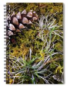 Earth Hour Spiral Notebook
