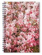 Earth Tones Apple Blossoms  Spiral Notebook