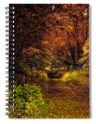 Earth Tones In A Illinois Woods Spiral Notebook