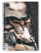 Earthen #2 Spiral Notebook