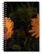 East Of Eden Spiral Notebook