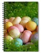Easter Egg Nest Spiral Notebook