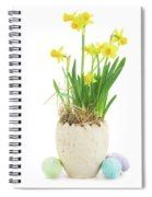 Easter Eggs Hunt Spiral Notebook