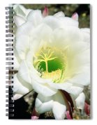 Easter Lily Cactus Flower Spiral Notebook