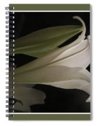Easter Lily Card Spiral Notebook