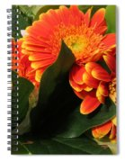 Easterjoy For You All Spiral Notebook