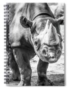 Eastern Black Rhinoceros Spiral Notebook