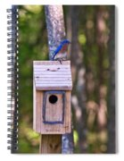 Eastern Bluebird Perched On Birdhouse 3 Spiral Notebook