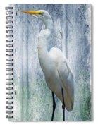 Eastern Great Egret Ardea Alba Modesta Spiral Notebook