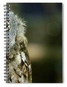 Eastern Screech Owl-6950 Spiral Notebook