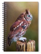 Eastern Screech Owl Red Morph Profile Spiral Notebook