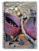 Eastern Skunk Cabbage Spathes - Symplocarpus Foetidus Spiral Notebook