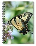 Eastern Tiger Swallowtail 2 Spiral Notebook