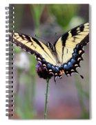 Eastern Tiger Swallowtail Butterfly In Garden 2016 Spiral Notebook