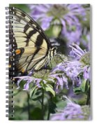 Eastern Tiger Swallowtail Spiral Notebook