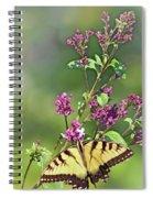 Eastern Tiger Swallowtail No. 4 Spiral Notebook