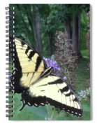 Eastern Tiger Swallowtail Sipping Nectar Spiral Notebook