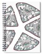 Eastern White Pine Needles, Lm Spiral Notebook