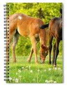 Easy Pickins Spiral Notebook