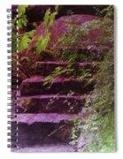 Easy Steps  Spiral Notebook