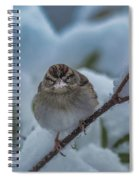 Eating Snow Spiral Notebook
