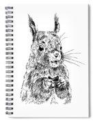 Eating Squirrel Spiral Notebook