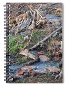 Ebb And Flow Spiral Notebook