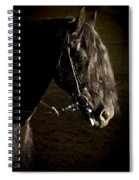 Ebony Beauty Spiral Notebook