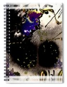 Ebony Nights Spiral Notebook