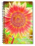 Ecclesiastes 11 7 Spiral Notebook