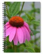 Echinacea 16-01 Spiral Notebook