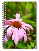 Echinacea 16-02 Spiral Notebook