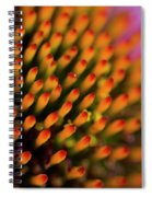 Echinacea Coneflower Abstract Spiral Notebook