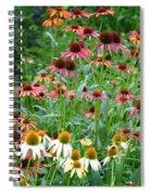 Echinacea Multi Mix Spiral Notebook