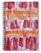 Coneflowers Particles Spiral Notebook