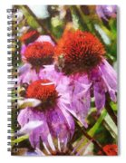 Echinacea Watercolor 2015 Spiral Notebook