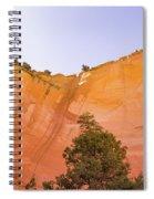 Echo Amphitheater Spiral Notebook