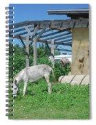 Ecological Farm Spiral Notebook